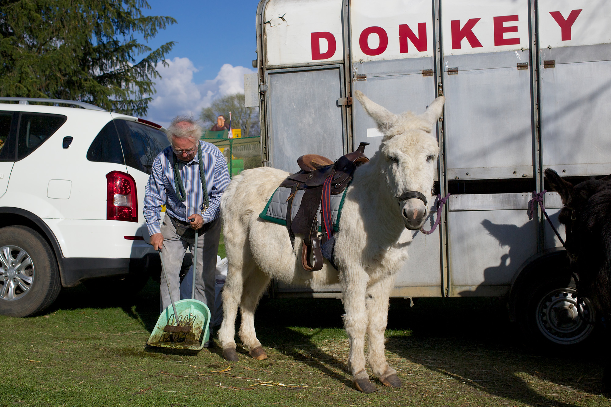 Donkey Poo